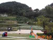 神光山公园