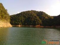 罗浮渡田河